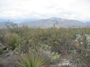 Redlands Conservancy Judson Brown Preserve