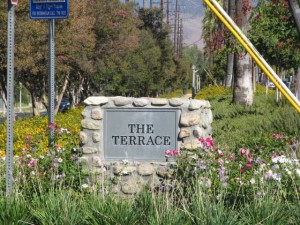 Redlands Conservancy restoration projects - The Terrace Park
