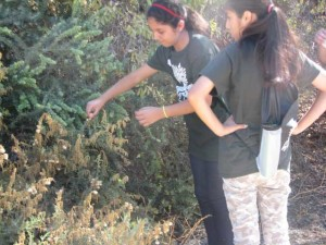 Redlands Conservancy City Kids Go Outdoors - program for urban youth