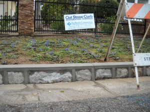 Redlands Conservancy historic preservation cut-stone curb restoration program