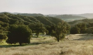 Redlands Conservancy land trust open space acquisition in Live Oak Canyon