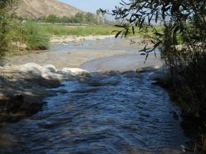 Redlands Conservancy open space preservation San Timoteo Nature Sanctuary wetlands