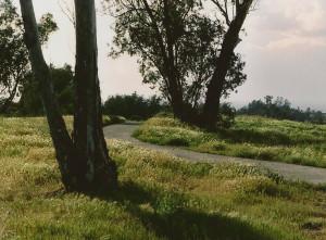 Redlands Conservancy Trails at 10