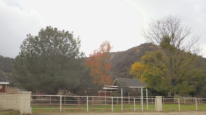 Redlands Gateway Ranch
